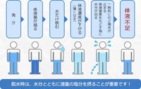 知っておきましょう【熱中症にならないための効率的な水分補給】