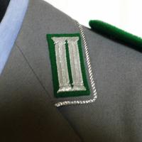kragenspiegel(襟章)