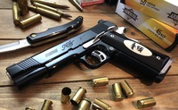 Kimber GOLD COMBAT Ⅱ -Part5 完成