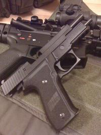 SIG P226R調整してみた。