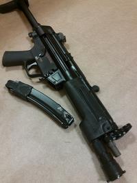 MP5 それが真実なのですか…?