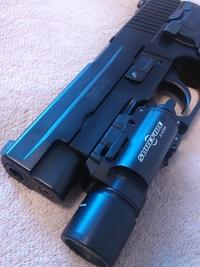 SIG P226R 納めるべき所に納めたいワケで…。