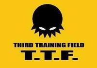 TTFレギュレーション2013
