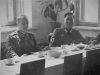 複製 / レプリカ:WWIIドイツ陸軍 日本人義勇兵シールド