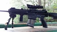 HK417(7.62×51mm)の民間バージョン