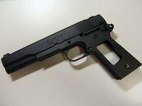 WA SFA V16